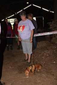 Dog eats bonio Bebe 190
