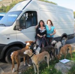 Bea Irene Albacete rescue 250 10 2011
