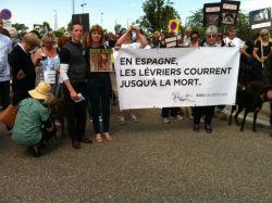 AnnaClements_JeromeGuillot_250 Estrasburgo