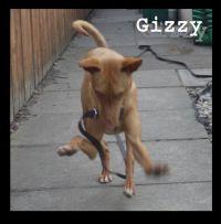 Gizzy Jane Jones 200