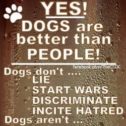 Dogs are better than people 250