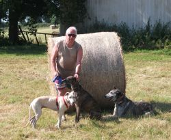 David and dogs in meadow