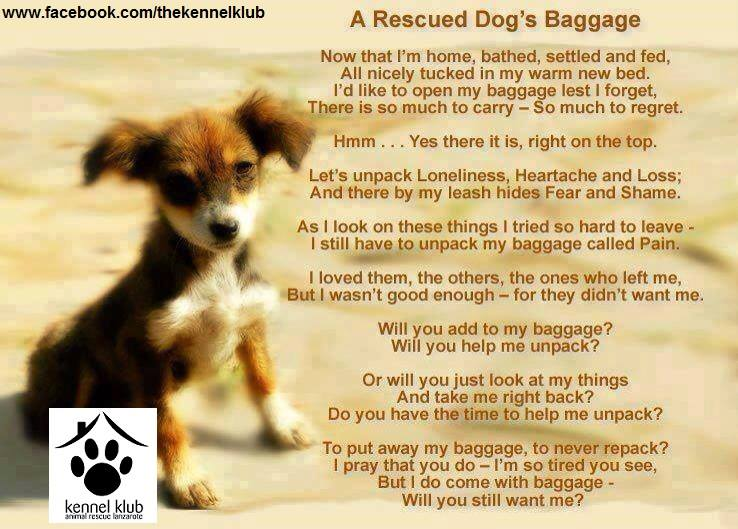 The Kennel Club Baggage poem