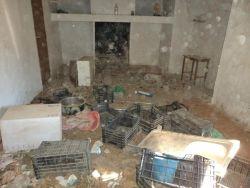 Jaen house of horrors room 4 250