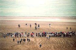 Madrigal galgo championships 250 10 1 2015