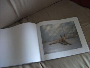 Martin book 1 300