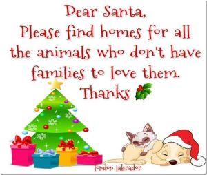 Dear Santa animal poster 300