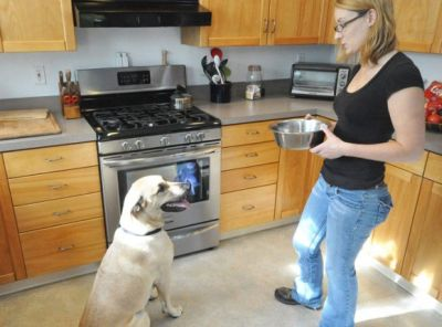 Clicker training Whole Dog Journal 400