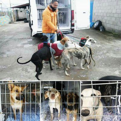 Scooby Castilla y Leon  400 3 2017