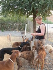 Dog Rescue Holidays galgos group 170