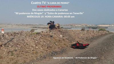90 Podencos mogan  TV prog  4007 2017