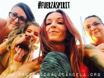 Refugio La Candela Spirit team 400 29 9 2017