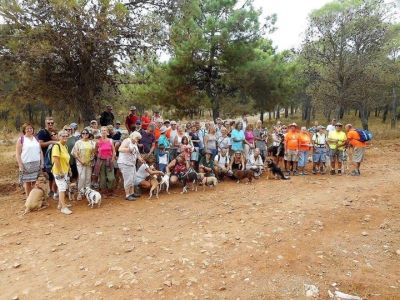 Vincent pups walk 400 14 10 2017