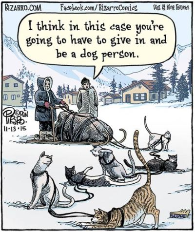 Be a dog person 400