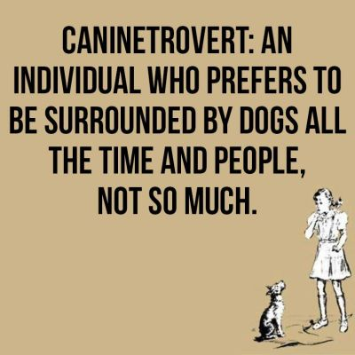 Caninetrovert 400