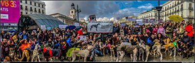 Madrid Manifestation 400 2 2015