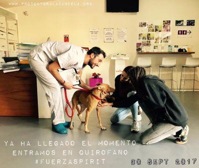 Refugio La Candela Spirit 400 30 9 2017