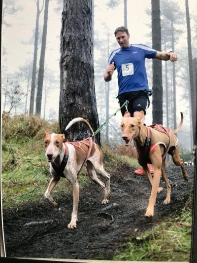 James Lewington running podencos 400 28 1 2018