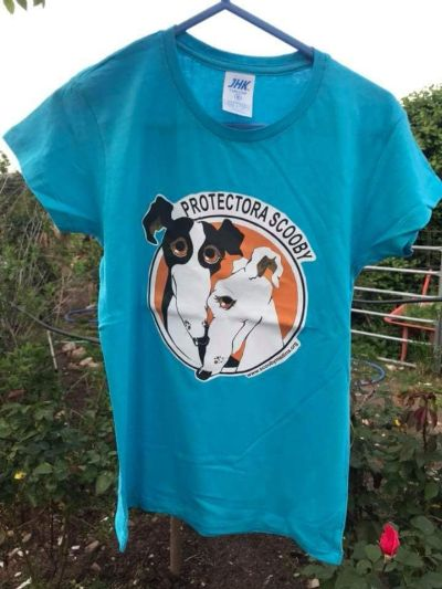 Scooby t-shirt galgo 400