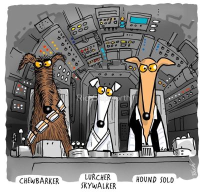 Richard skipworth hound solo 400