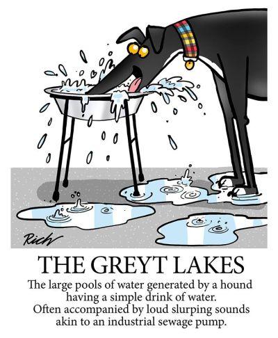 Richard Skipworth Greyt lakes 400