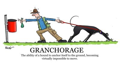 Richard skipworth granchorage 400