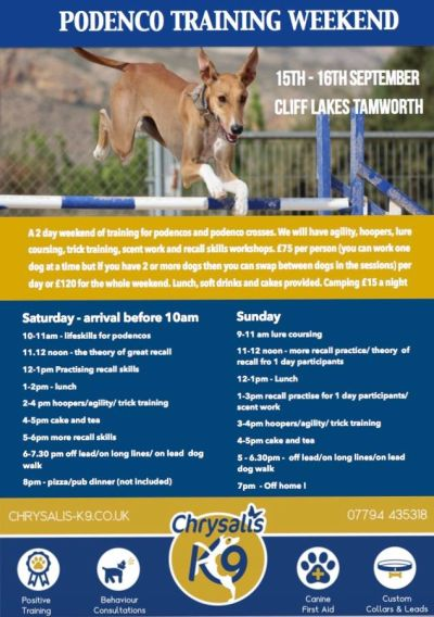 Podenco Training weekend 400 9 2018