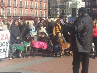 Manifestation Valladolid 400 3 2 2019 1