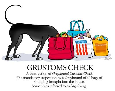 Richard Skipworth Grustoms Check 400
