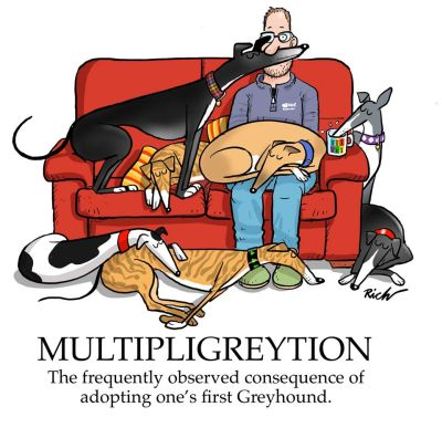 Richard Skipworth Multipligreytion 400