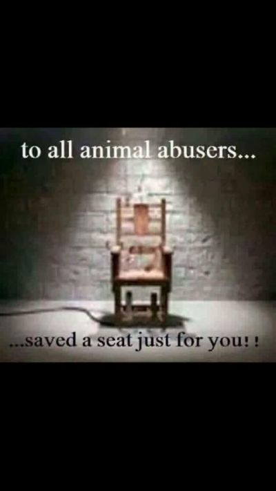 To all animal abusers 400