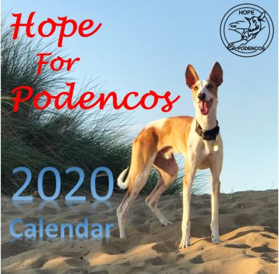 Hope for Podencos calendar 400