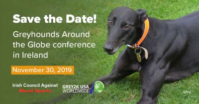 Greyhound Conference 400  Ireland November 2019
