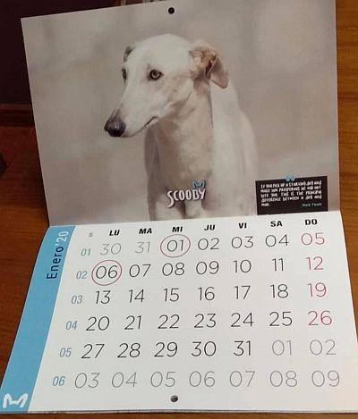 Scooby calendar 1 400