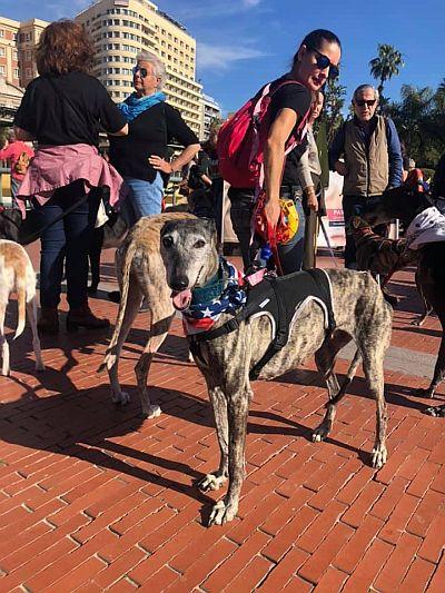 March Malaga 400