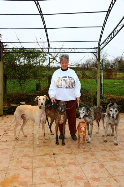 Beryl 5 dogs  400