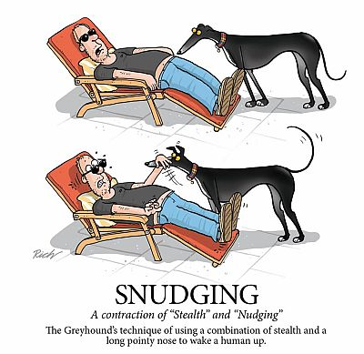 Richard Skipworth Snudging 400