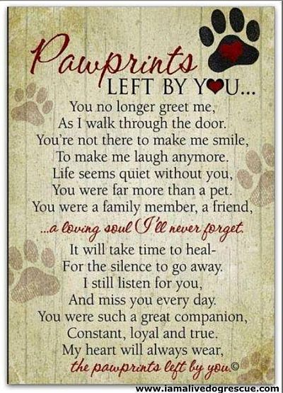 RIP Pawprints poem 400