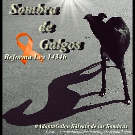 Argentina Sombra des Galgos logo
