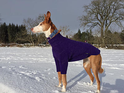 Bev Carley snow 400 1 3 2021