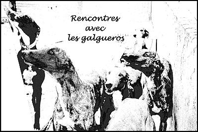 Galgopod Andco rencontres avec les galgueros 2016 400
