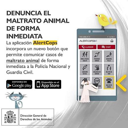 Animal cruelty denuncia App 450