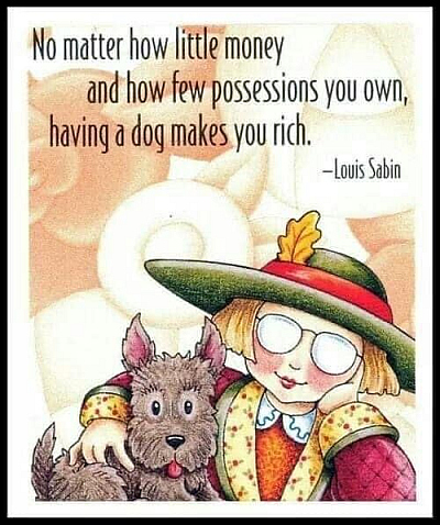 Having a dog makes you rich 400