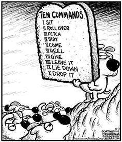 10 commandments Paranormal 400